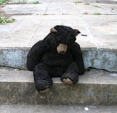 haunted_bear.jpg
